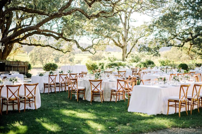 Vibrant Events Weddings